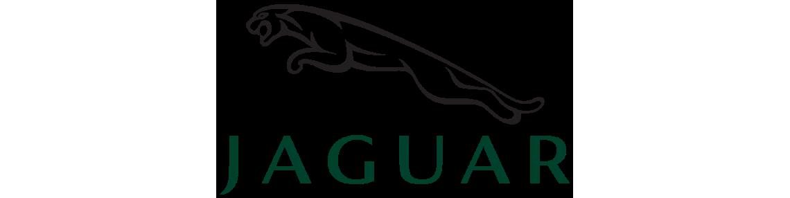 Ricambi Jaguar - Ricambi Originali Jaguar | SosRicambi.com